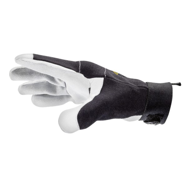 Universal glove